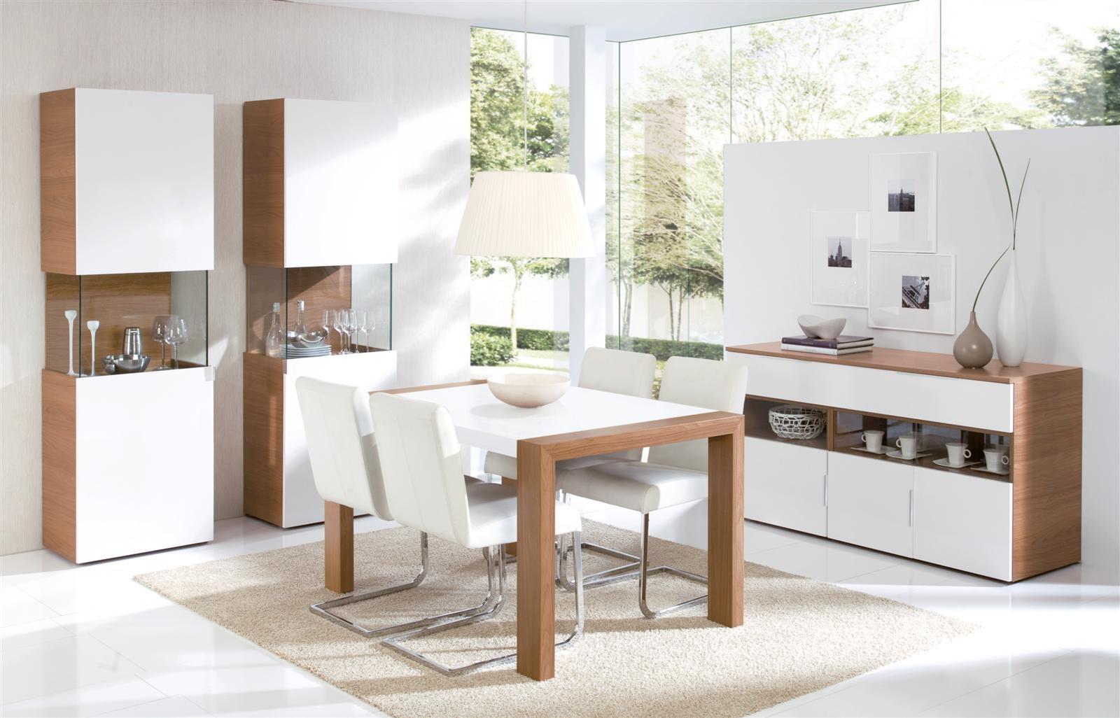 Salon moderno merino zaidin for Comedores grandes modernos